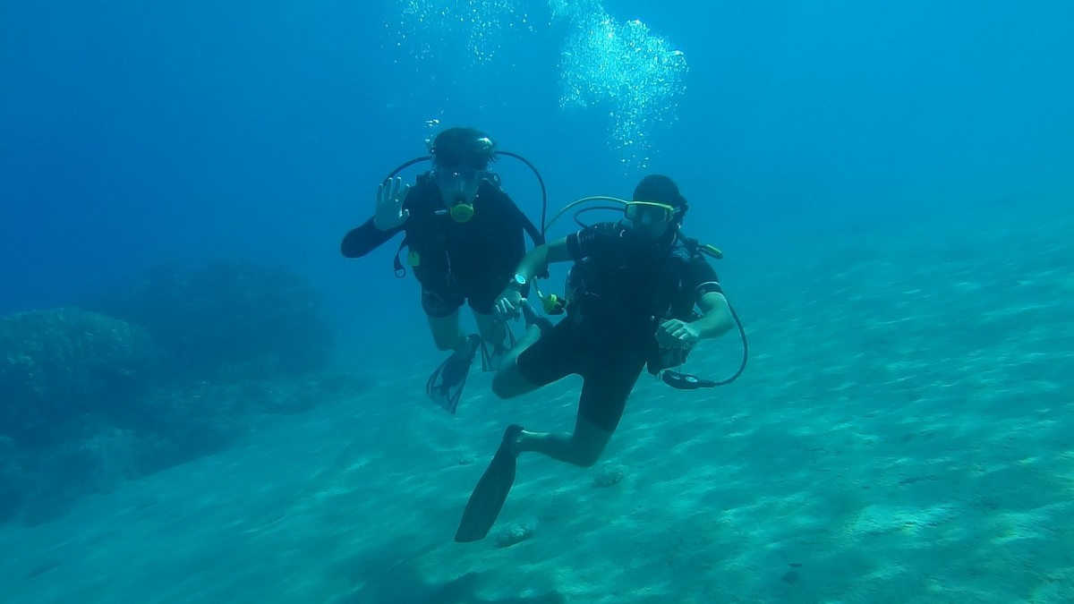 scuba diving locations siesta key